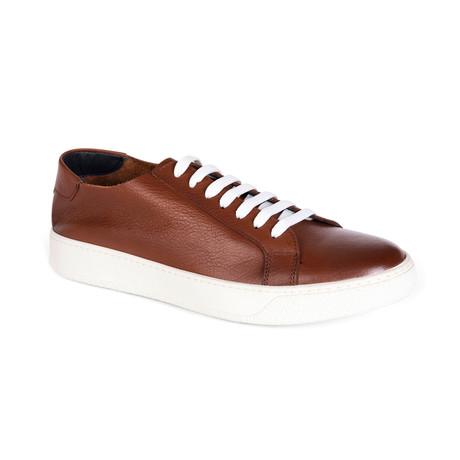 Holden Shoe // Bronze