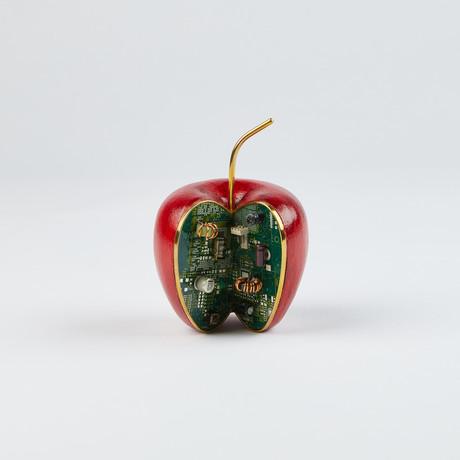 Applebyte // Red Wood Acacia