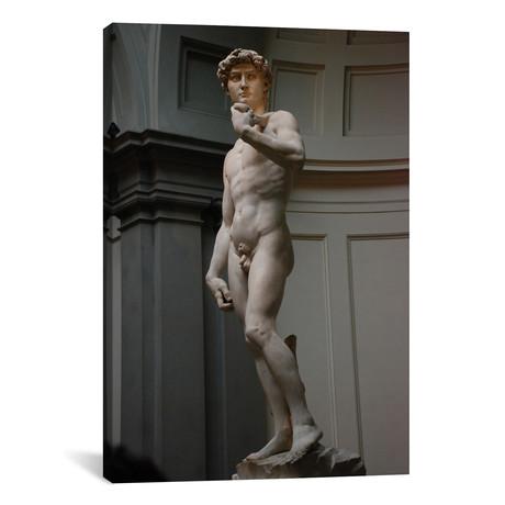 "David // Michelangelo (18""W x 26""H x 0.75""D)"