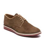 Santiago Suede Sport Shoe // Brown (Euro: 44)