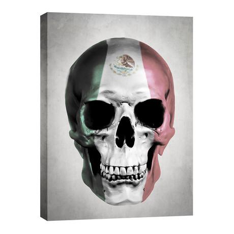 """Mexican Skull // Gray (12""""W x 16""""H x 0.75""""D)"""