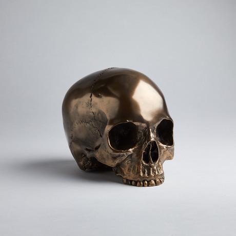 Bronze Skull Head