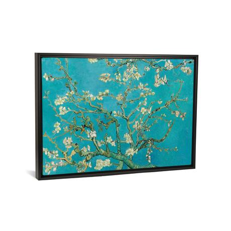 Almond Blossom, 1890 // Vincent van Gogh // Framed