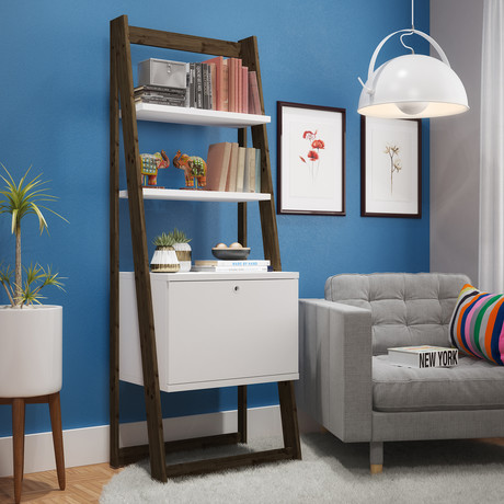 Luna Ladder Bookcase