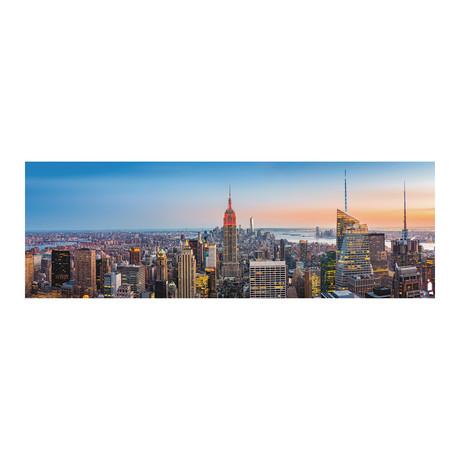 NYC Skyline Day (60W x 20H x 1D)