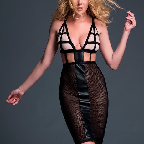Leia Almost Nude Mesh Dress // Black (S)