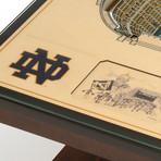 NCAA // Notre Dame Fighting Irish