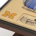 NCAA // Michigan Wolverines