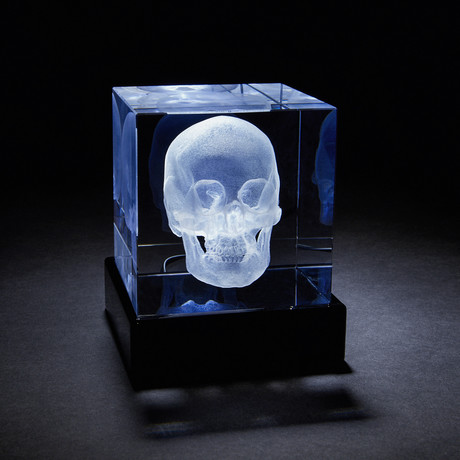 Skull Crystal + LED Base