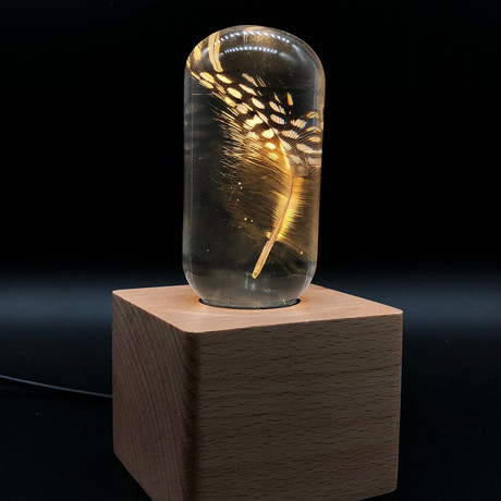 Feather Lamp