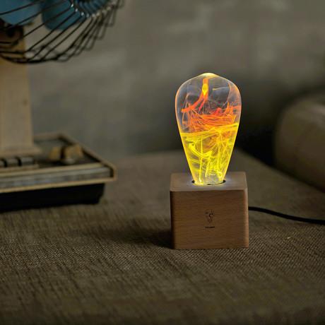 Solar Halo Lamp
