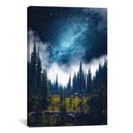 """Alpine Dreamland // Zach Doehler (12""""W x 18""""H x 0.75""""D)"""