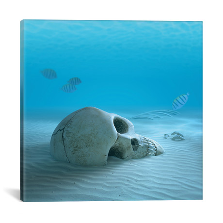 """Skull On Sandy Ocean Bottom With Small Fish Cleaning Some Bones // Johan Swanepoel (12""""W x 12""""H x 0.75""""D)"""