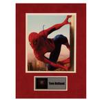 Tom Holland // Spiderman // Signed Photo