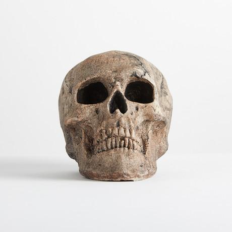 Ceramic Aged Skull // Mini