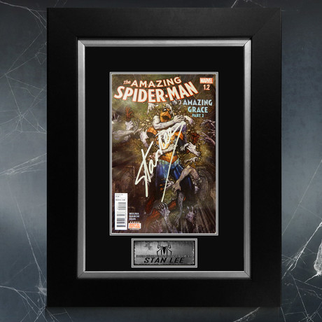 Spider-Man Amazing Grace #1 // Stan Lee Signed Comic Book (Signed Comic Book Only)