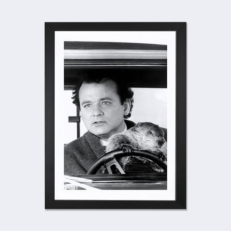 "Bill Murray Driving A Car With A Beaver // Globe Photos, Inc. (24""W x 16""H x 1""D)"