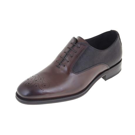 Lloyd Oxford Shoe // Brown (Euro: 40)