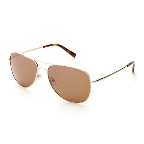 Ted Baker Sunglasses // TBM016GLD