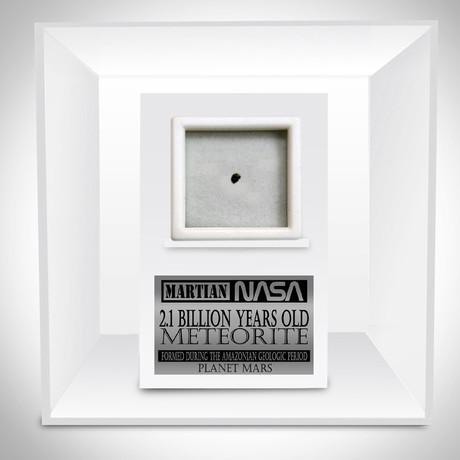 Authentic Martian Meteorite // Museum Display (Meteorite Only)