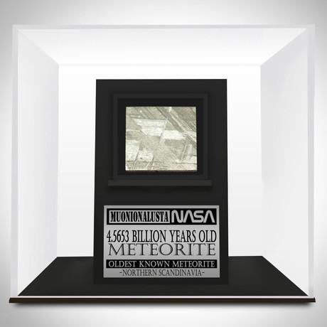 Meteorite Authentic Muonionalusta Slab // Museum Display (Meteorite Only)