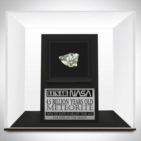 Authentic Lunar Meteorite // Museum Display (Meteorite Only)