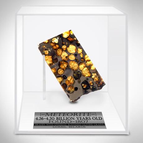 Meteorite Authentic Brahin Pallasite // Museum Display (Meteorite Only)