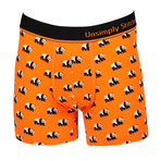 Ferdinand Boxer Brief // Orange (M)