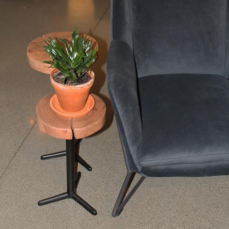 Organic Martini Tables // Set of 2