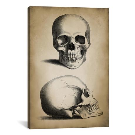 """Skull // PatentPrintStore (26""""W x 18""""H x 0.75""""D)"""
