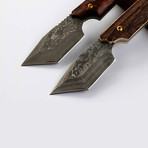 Red Bull Tanto Damascus Fixed Blade // Horn Grip