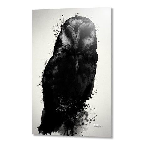 The Owl // Aluminum Print