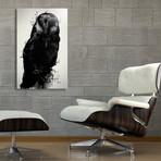 The Owl // Aluminum Print