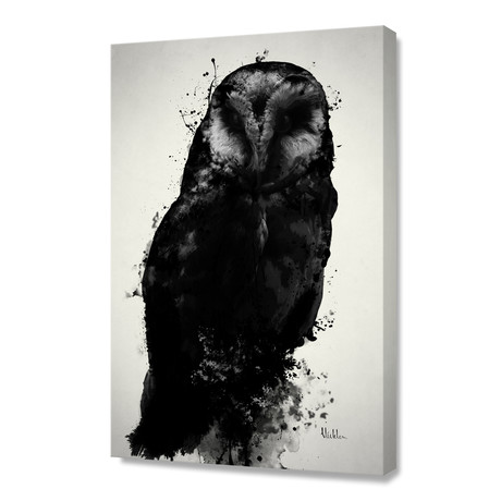 The Owl // Stretched Canvas