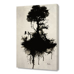 Last Tree Standing // Stretched Canvas