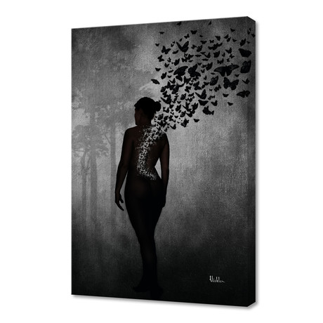The Butterfly Transformation // Stretched Canvas