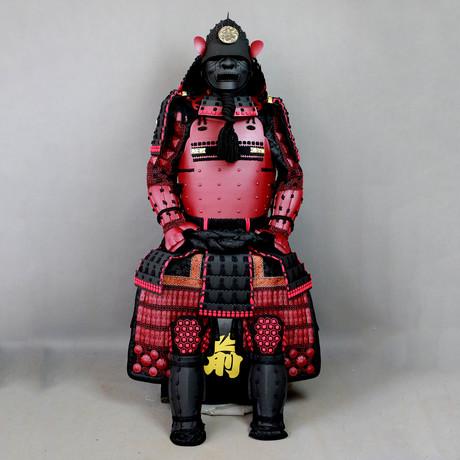 Ryū Senshi Ressei Momonari