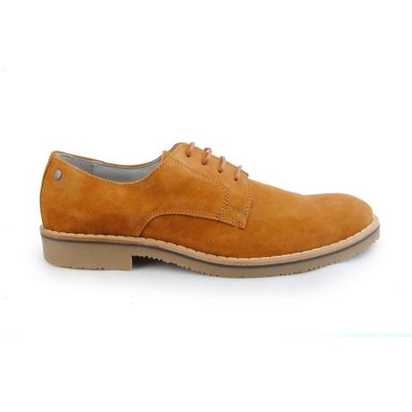 Veltane // Leather (Euro: 39)