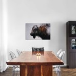 """Bison III (18""""W x 26""""H x 0.75""""D)"""