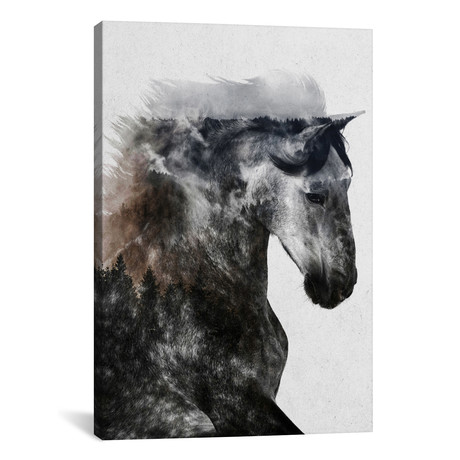 "Proud Stallion (26""W x 18""H x 0.75""D)"