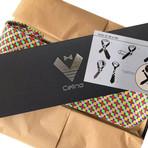 Silk Neck Tie // Multi Color