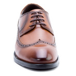 Williams Wing-Tip Derby // Cognac (US: 9.5)