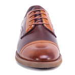 Warhol Dress Shoes // Brown (US: 11.5)