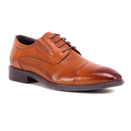 Jed Dayes Dress Shoes // Cognac (US: 8)