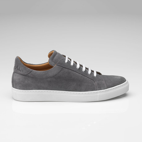Suede Sneaker // Gray (UK: 7)
