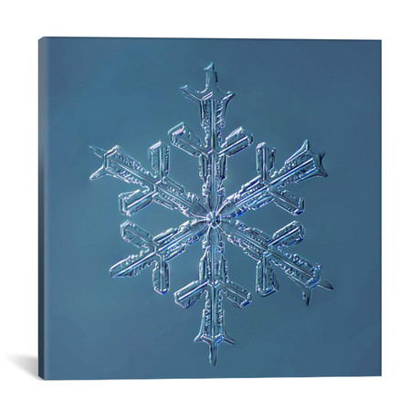 "Stellar Dendrite Snowflake 001.2.16.2014 // Print Collection (18""W x 18""H x 0.75""D)"