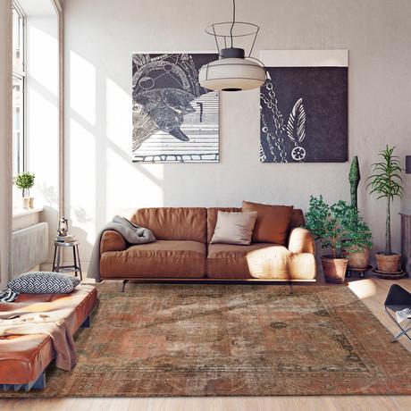 "Color Transition // Brown + Copper // 10' x 13'2"""