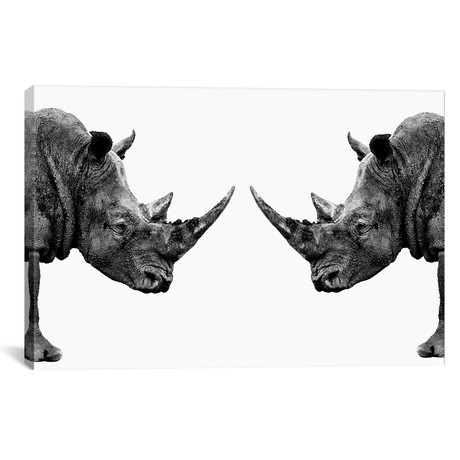 "Rhinos Face to Face White Edition // Philippe Hugonnard (26""W x 18""H x 0.75""D)"