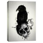 "Raven + Skull (12""W x 16""H x 0.75""D)"