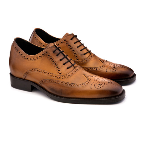 Regent Street Shoe // Brown (US: 7)